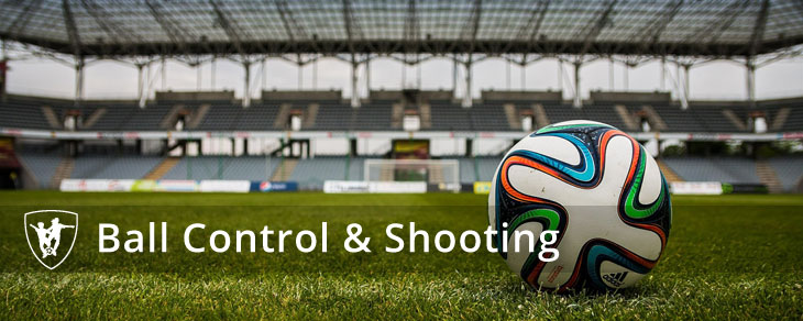 Ball Control & Shooting